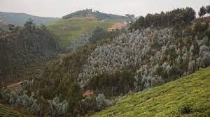 """Ruanda """"beceneve"""": az ezer hegy országa, Afrika egyik legzöldebb országa"""